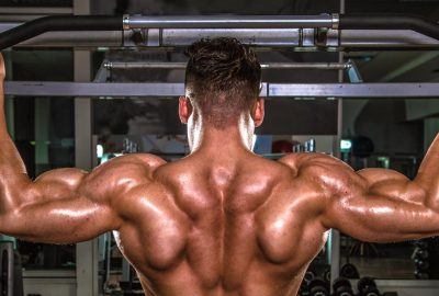Developing Two Important B's: Your Back and Biceps